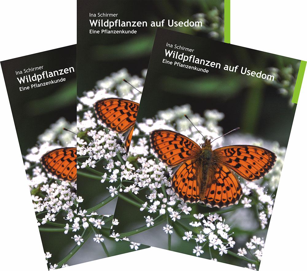Kräuter | Verbena | Usedom | Verlag | Buch | «Wildpflanzen auf Usedom | Ein Pflanzenkunde»