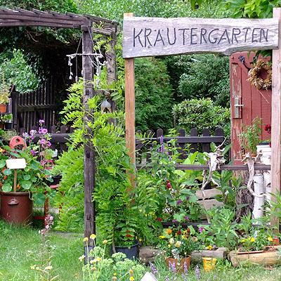 Kräuter | Verbena | Usedom | Kräutergarten
